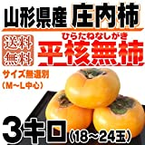 【訳あり】 山形県庄内産 庄内柿 種なし 3kg(18~24玉前後)