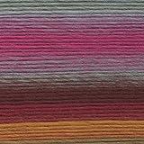 Lion Brand Yarn  545-204 Landscapes Yarn, Desert Spring