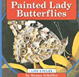 Painted Lady Butterflies (Life Cycles)
