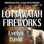 Lottawatah Fireworks: Brianna Sullivan Mysteries | Evelyn David