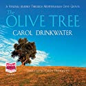 The Olive Tree Audiobook by Carol Drinkwater Narrated by Carol Drinkwater