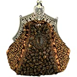 MG Collection Lydia Vintage Victorian Brooch Beaded Clasp Clutch