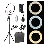 Zomei 12-inch Inner/14-inch Outer LED Ring Light 36W 5500K Lighting Kit with Tripod Stand Ball Head and Phone Adapter for Camera Smartphone YouTube Video Shooting (Tamaño: 14