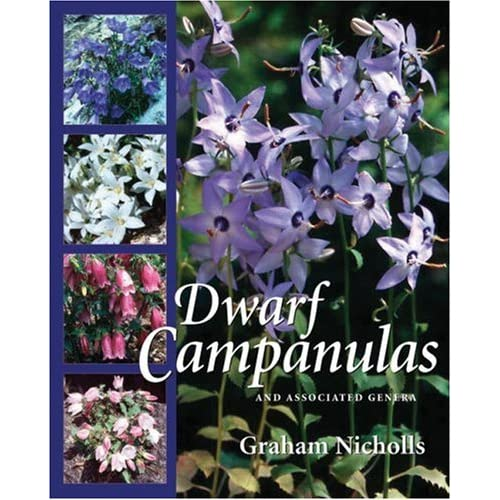 Dwarf Campanulas and Associated Genera, Nicholls, Graham