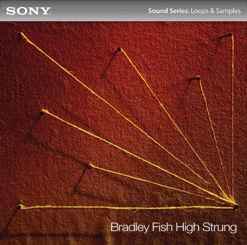 Bradley Fish: High Strung [Download]