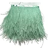 Sowder Ostrich Feathers Trims Fringe with Satin Ribbon Tape Dress Sewing Crafts Costumes Decoration Pack of 2 Yards(Mint Green) (Color: Mint green)