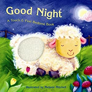Good Night: A Touch &amp; Feel Bedtime Book