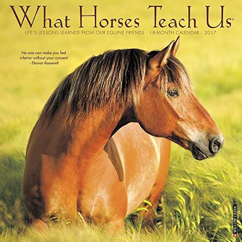 What Horses Teach Us 2017 Wall Calendar