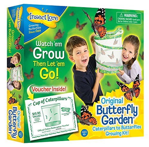 insect-lore-butterfly-garden