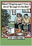CAB1888 Cat Christmas Christmas Humor...