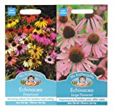 Mr Fothergill's Seeds Echinacea Coneflower Collection