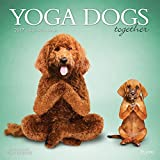 img - for Yoga Dogs Together 2017 Square Plato book / textbook / text book