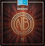 D'Addario ダダリオ アコースティックギター弦 ニッケルブロンズ Light .012-.053 NB1253 【国内正規品】