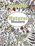 Really RELAXING Colouring Book 4: Natural Wonders: A Colourful Journey Through the Natural World (Really RELAXING Colouring Books)