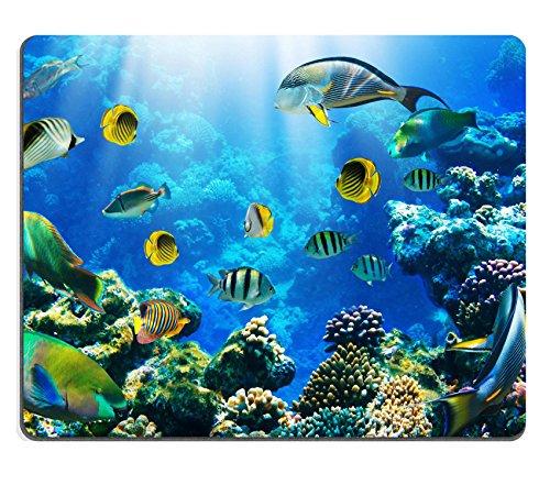 Liili mouse pad de goma natural mousepad una foto de peces - Fotos de peces tropicales ...