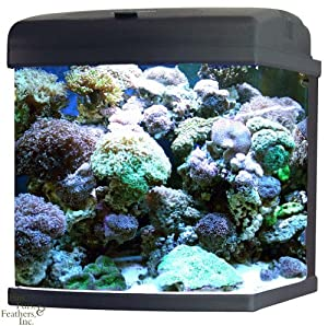 JBJ MT-602-LED  Nano Cube CF Quad Lighting, 28-Gallon