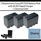 Accessory Kit for Sony Digital Camcorders with 3 Replacement Battery Packs for Sony NP-F970 For Sony TRV815 82 85 87 88 90 91 93 95 98 99 DCR-SC100 DCR-TR7000 TRV110 120 130 210 310 315 320 510 520 525 V7 720 820 V9 900 VX2000 VX2100 HDR-FX1 FX7 FX1000 AX2000 HVR-Z1U GV-D200 700 Digital Camcorders +AC/DC Charger +Cleaning Cloth