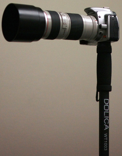 Dolica WT-1003 67-Inch Lightweight Monopod