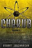 Robert Muchamore Divine Madness (Cherub)