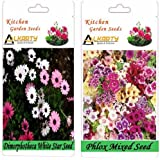 Alkarty Dimorphotheca White Star Phlox Mixed Seeds Pack Of 20 (Winter)