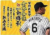 阪神タイガース 金本監督初勝利記念クリアファイル(2枚組) 大変貴重!