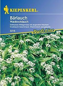 Bärlauch / Waldknoblauch