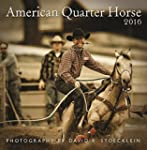 2016 American Quarter Horse Wall Cale...