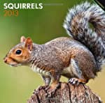 Squirrels 2013 Square 12X12 Wall Cale...