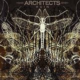 Ruin Architects