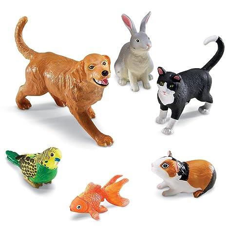 Jumbo Animals Domestic Pets