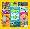 National Geographic Little Kids First Big Book Of Why from National Geographic Children's Books
