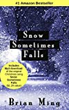 Snow Sometimes Falls: Novel of Hope in the Midst of Tragedy