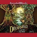Dreamwood Audiobook by Heather Mackey Narrated by Jennifer Grace