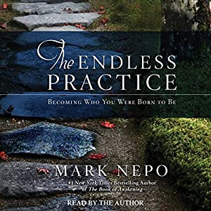 The Endless Practice Audiobook