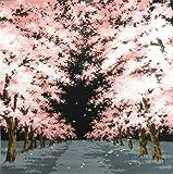 和雑貨 風呂敷 桜並木 クロ 60750925