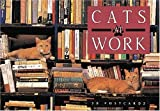 Cats at Work (Gift Line) (1558594264) by Gray, Rhonda