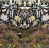 Panda Park [Vinyl]