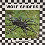 img - for Wolf Spiders book / textbook / text book