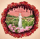 Secret Garden(初回生産限定盤)(DVD付)