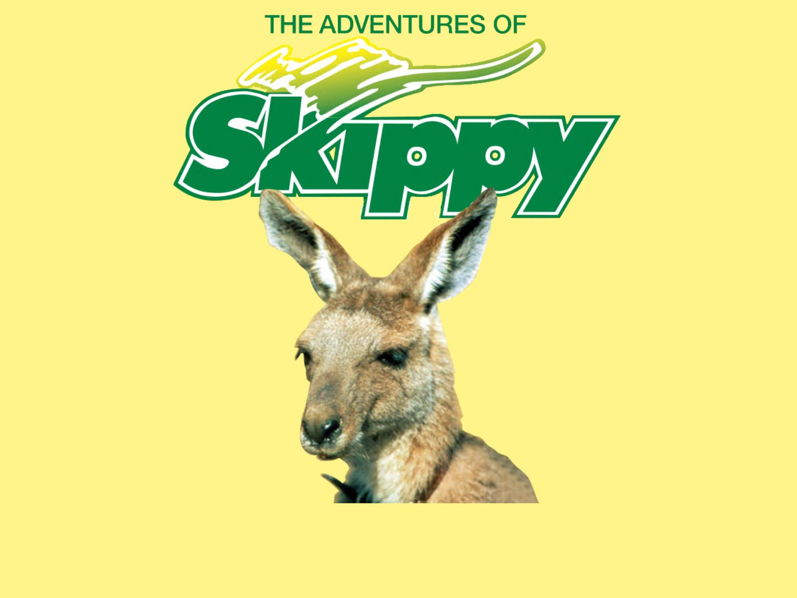 The Adventures of Skippy on Amazon Prime Instant Video UK