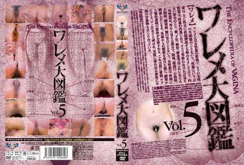[素人の皆様] ワレメ大図鑑 Vol.5 WREM-005