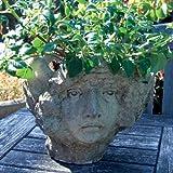 Large Garden Planter - Modena 36 Stone Vase Plant Pot