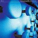 Static Prevails (Vinyl)