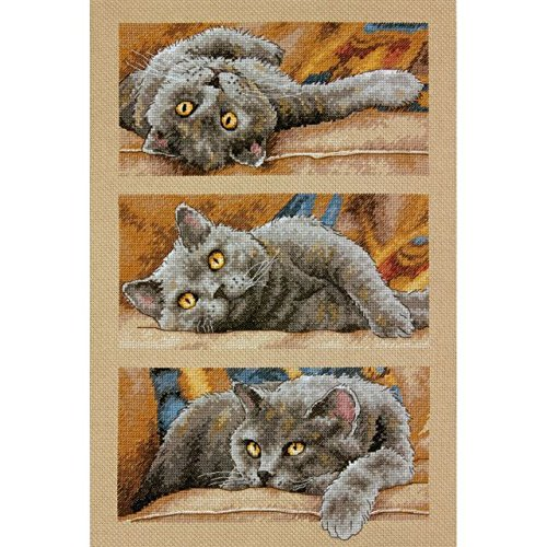 Max The Cat Counted Cross Stitch Kit - NOTM051508 supplier_officesupply