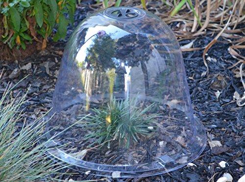 Tierra Garden 50 1100 Haxnicks Protective Plant Bell 3