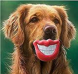 ?Happy Life Co.,ltd?ペット用オモチャ ドッグ用品 ボール 噛み 犬のおもちゃ 音を出す おもしろマウス DO0318