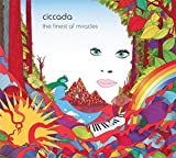 The Finest Of Miracles by CICCADA (2015-08-03)