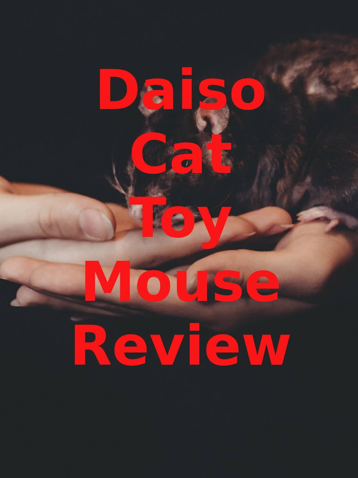 Review: Daiso Cat Toy Mouse Review