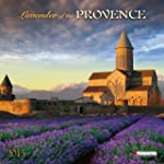 Lavender of the Provence 2015