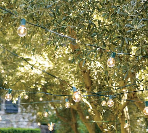 String Lights In Trees: 40' Outdoor Lights Suspended Patio Deck Back Yard Hanging